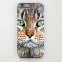 Street Cat portrait CC1402 iPhone 6 Slim Case