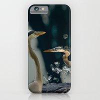 Great Blue Herons iPhone 6 Slim Case