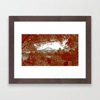 Harbour Bridge through the trees Framed Art Print