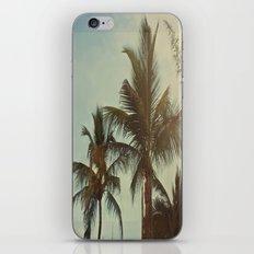 Florida Palm Trees iPhone & iPod Skin
