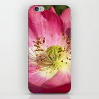 pink bloom focus IX iPhone & iPod Skin