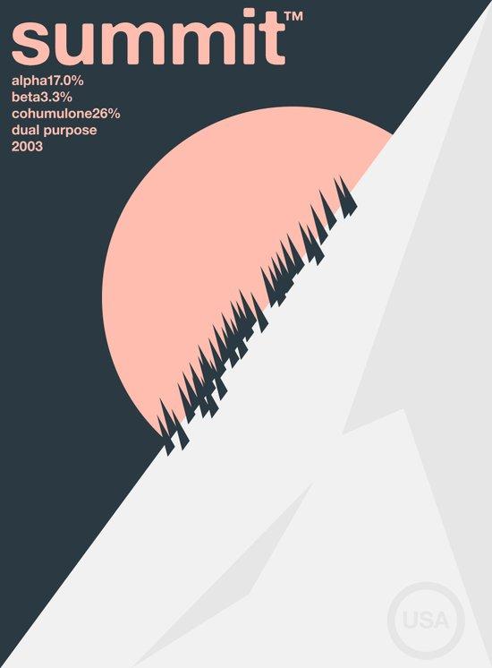 summit single hop Art Print