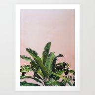 Tropical Palm Leaves On … Art Print