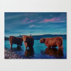 different cows Canvas Print