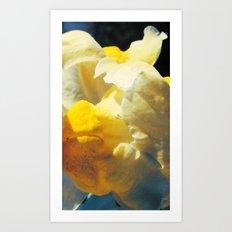 Sunmoon Art Print