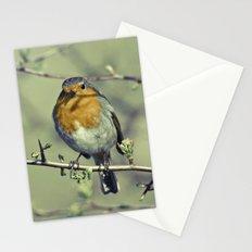 Robin Redbreast Stationery Cards