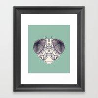 Odonata Framed Art Print