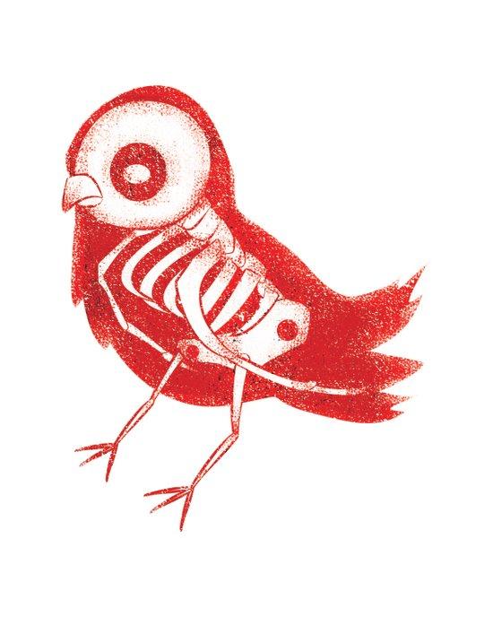 Bird X-Ray Art Print