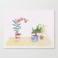 A flowery feeling Canvas Print