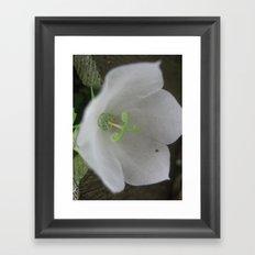 white dress Framed Art Print