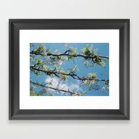 Wisteria, Southampton Ea… Framed Art Print