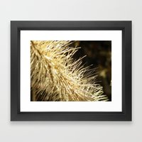 Dried Out Framed Art Print