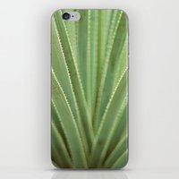 Agave no. 1 iPhone & iPod Skin