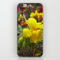 Nature Blossoming iPhone & iPod Skin