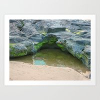 Moss on  rocks with puddle on the East Coast of Queensland, Australia Art Print
