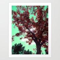 Rubis Art Print