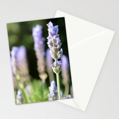 Lavender Stationery Cards