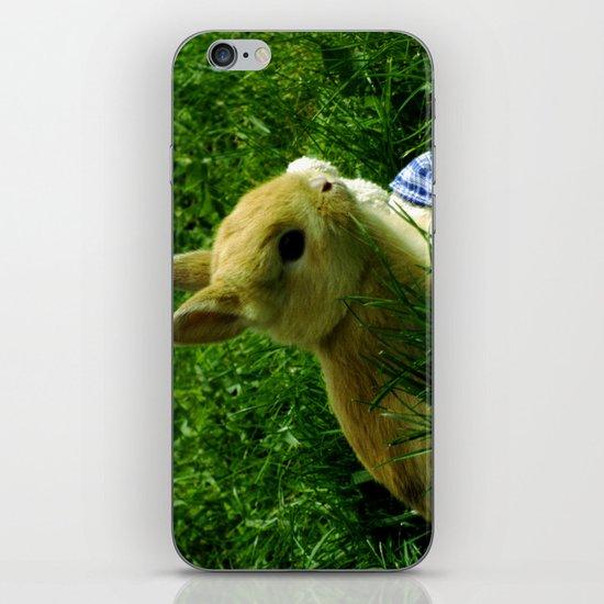 The Egg Keeper iPhone & iPod Skin