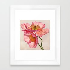 Like Light through Silk - peach / pink translucent poppy floral Framed Art Print
