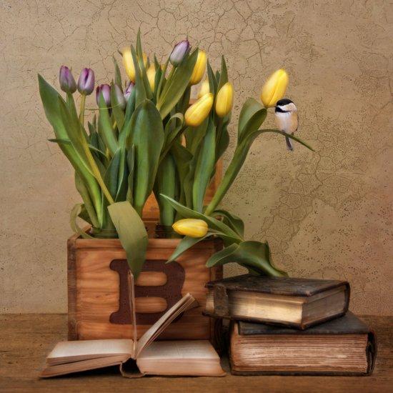 Bird Books Blooms Art Print