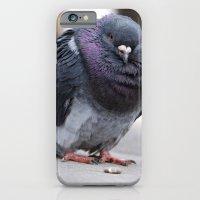 iPhone & iPod Case featuring Mr Pigeon by Kirstie Battson
