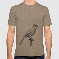 Albino Blue Jay - Square Format Natural History Bird Portrait Mens Fitted Tee Tri-Coffee SMALL
