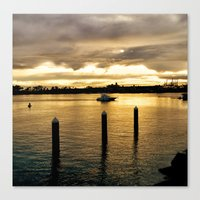 Settling in the Bay Canvas Print