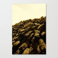 Turf Canvas Print