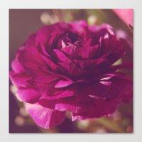 Crimson Rose Canvas Print