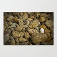 Lonely white pebble Canvas Print