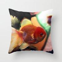 Freshwater Gold Fish Throw Pillow