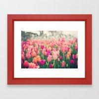 Tulips At Cheekwood Framed Art Print