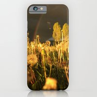 Rainbow Thunderstorm Sunset Through a Field of Dandelions iPhone 6 Slim Case