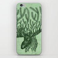 Moose-fir iPhone & iPod Skin