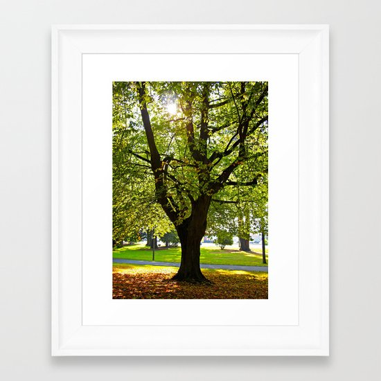 Autumn sun shines Framed Art Print