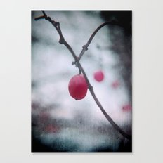 Lonely Winterberry Canvas Print