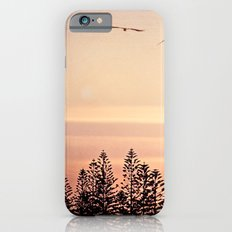 A beautiful day's end iPhone 6 Slim Case