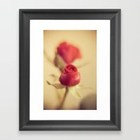 A Red Rose For Your Swee… Framed Art Print
