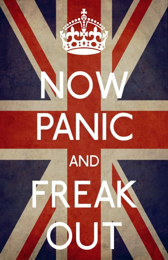 NOW PANIC AND FREAK OUT Art Print