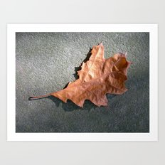 old leaf II Art Print