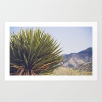 Scenes from the West Art Print