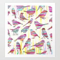 Birds Seen Rainbow Art Print