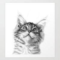 Kitten Looking Up G115 Art Print