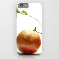 Pomegrantes iPhone 6 Slim Case