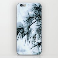 Snow Laden Pine - A Winter Image iPhone & iPod Skin