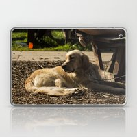 Dog's Life Laptop & iPad Skin