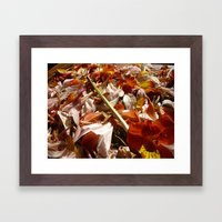 Flowers on a table  Framed Art Print