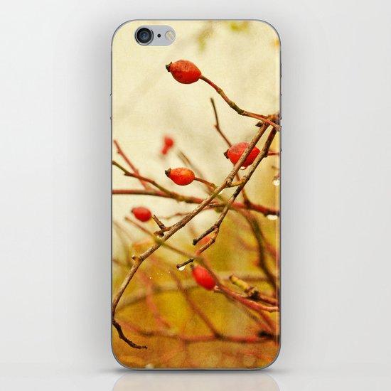 vintage rosehips iPhone & iPod Skin