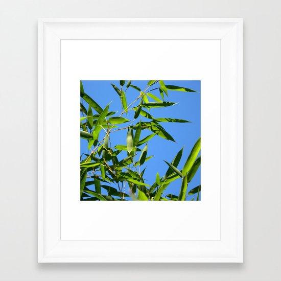 green bamboo II Framed Art Print