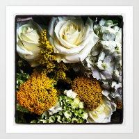 Summertime White Roses Art Print